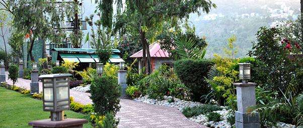Hills Pride Resort, Kasauli